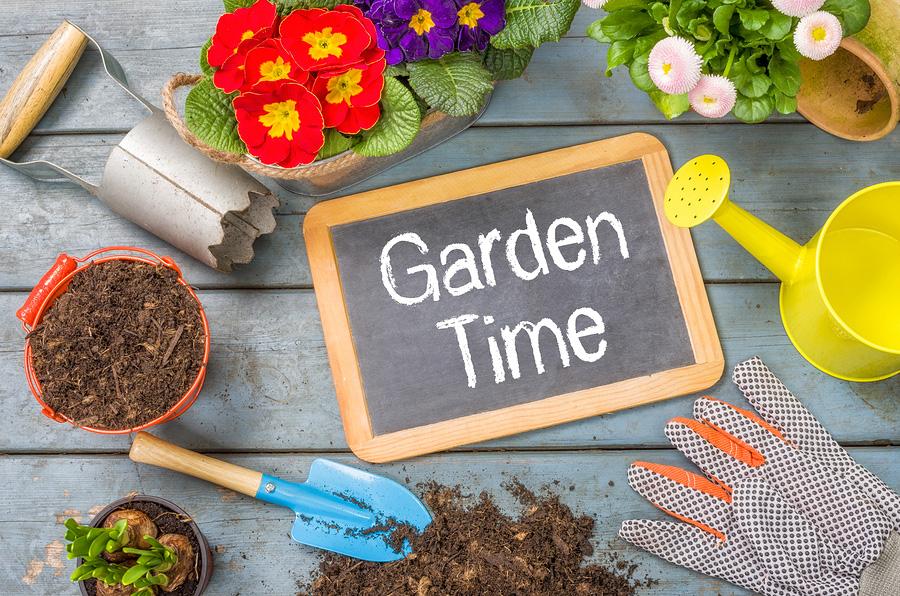 How to prepare a home garden in Auburn, WA