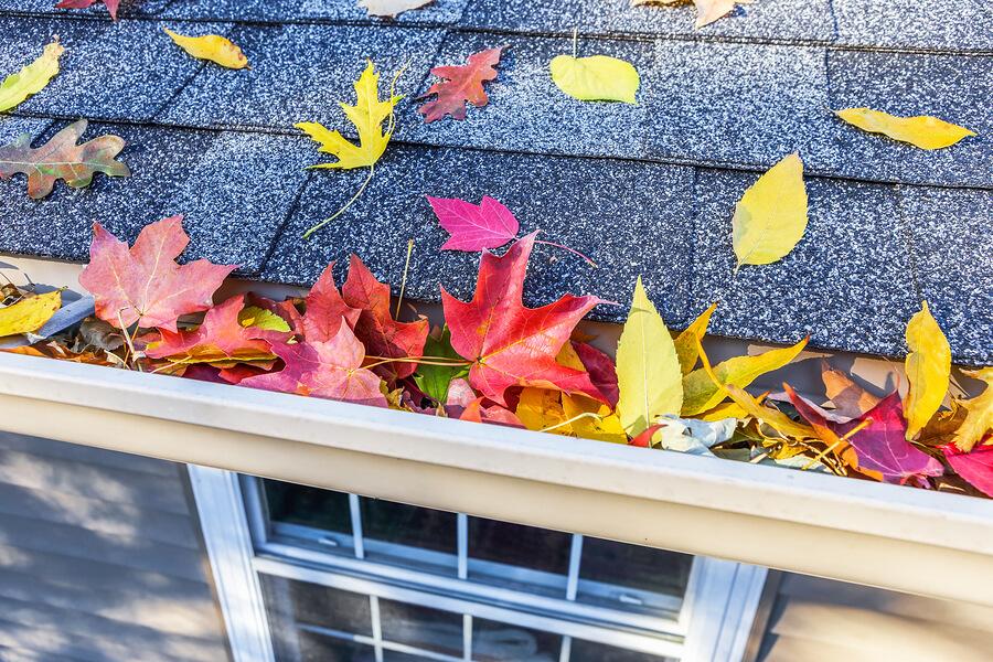 Fall Home Maintenance Checklist for your Auburn, WA home